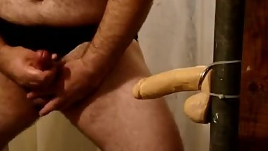 Nasty Bear with Dildo